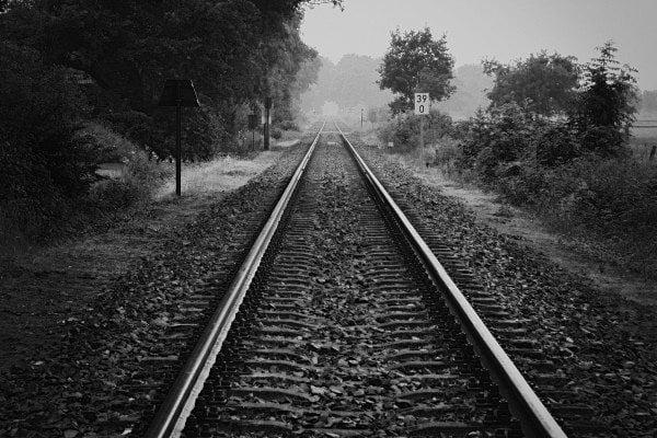railroad-in-forest-1-bw